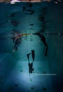 learn to freedive