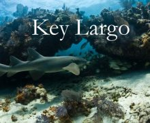 Key Largo, FL
