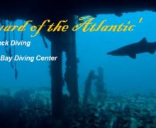 NC Wreck Diving